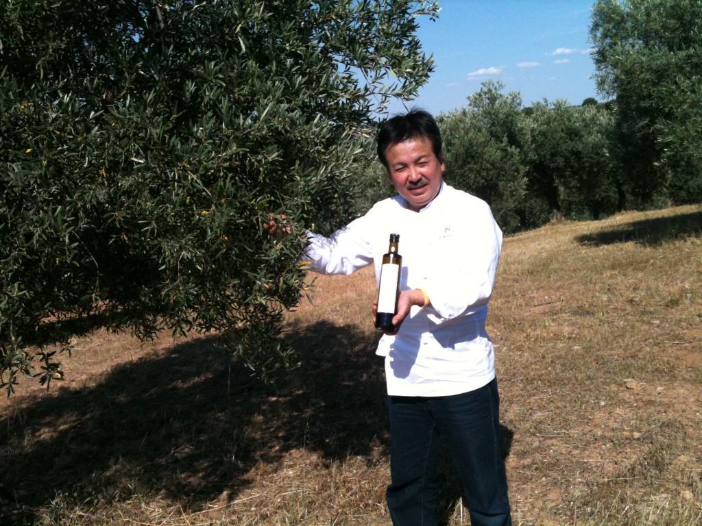 visitas y catas olivar ecológico